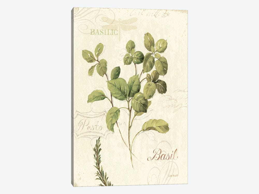 Aromatique III by Lisa Audit 1-piece Canvas Art Print