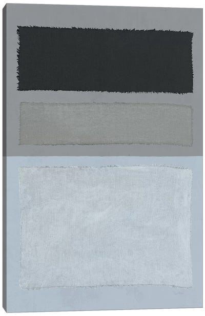 Painted Weaving II Canvas Art Print