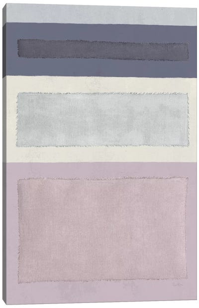 Painted Weaving IV Canvas Art Print
