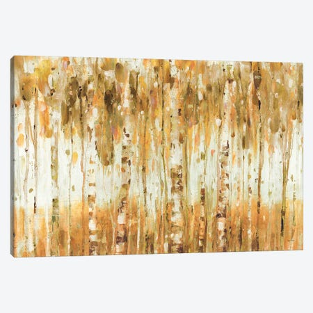 The Forest I (Autumn) Canvas Print #WAC6748} by Lisa Audit Canvas Print