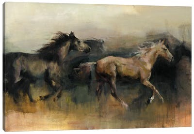Roaming The West Canvas Art Print