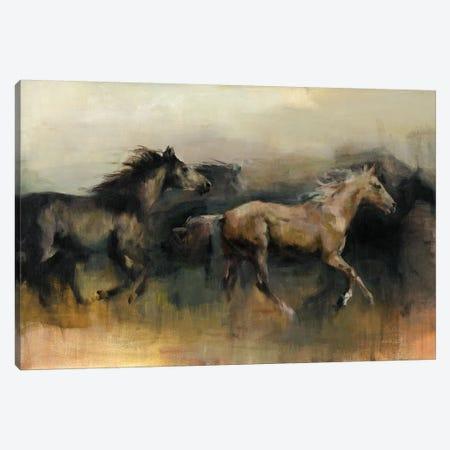 Roaming The West Canvas Print #WAC6773} by Marilyn Hageman Canvas Artwork