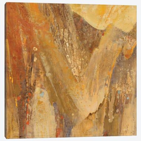 Canyon III.A Canvas Print #WAC6774} by Albena Hristova Canvas Art Print
