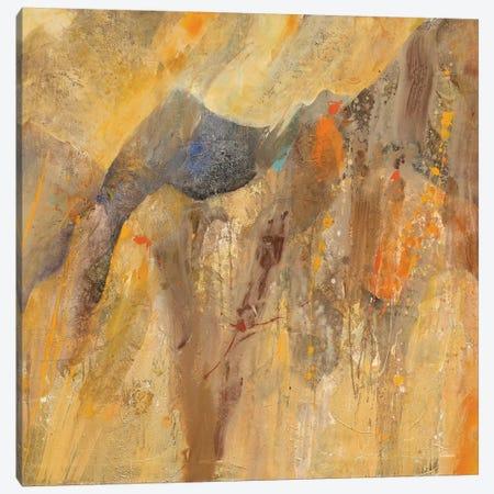 Canyon III.B Canvas Print #WAC6775} by Albena Hristova Art Print