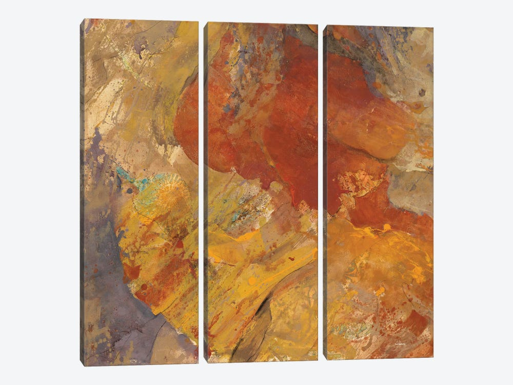 Canyon III.C by Albena Hristova 3-piece Canvas Wall Art