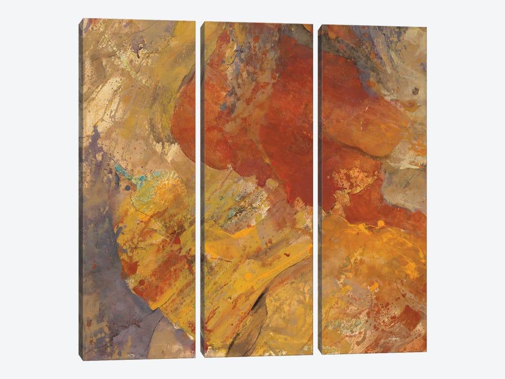 Canyon III.C by Albena Hristova 3-piece Canvas Wall Art