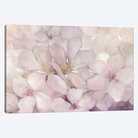 Apple Blossoms Canvas Print #WAC6783} by Julia Purinton Canvas Print