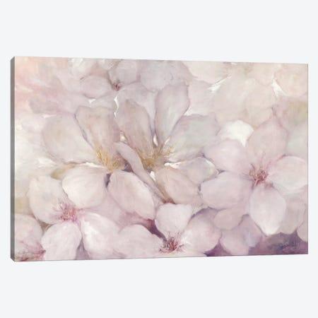 Apple Blossoms Canvas Print #WAC6783} by Julia Purinton Canvas Print