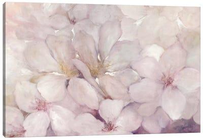 Apple Blossoms Canvas Art Print