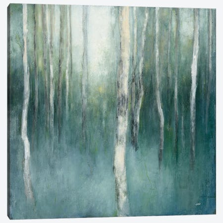 Forest Dream Canvas Print #WAC6787} by Julia Purinton Canvas Artwork