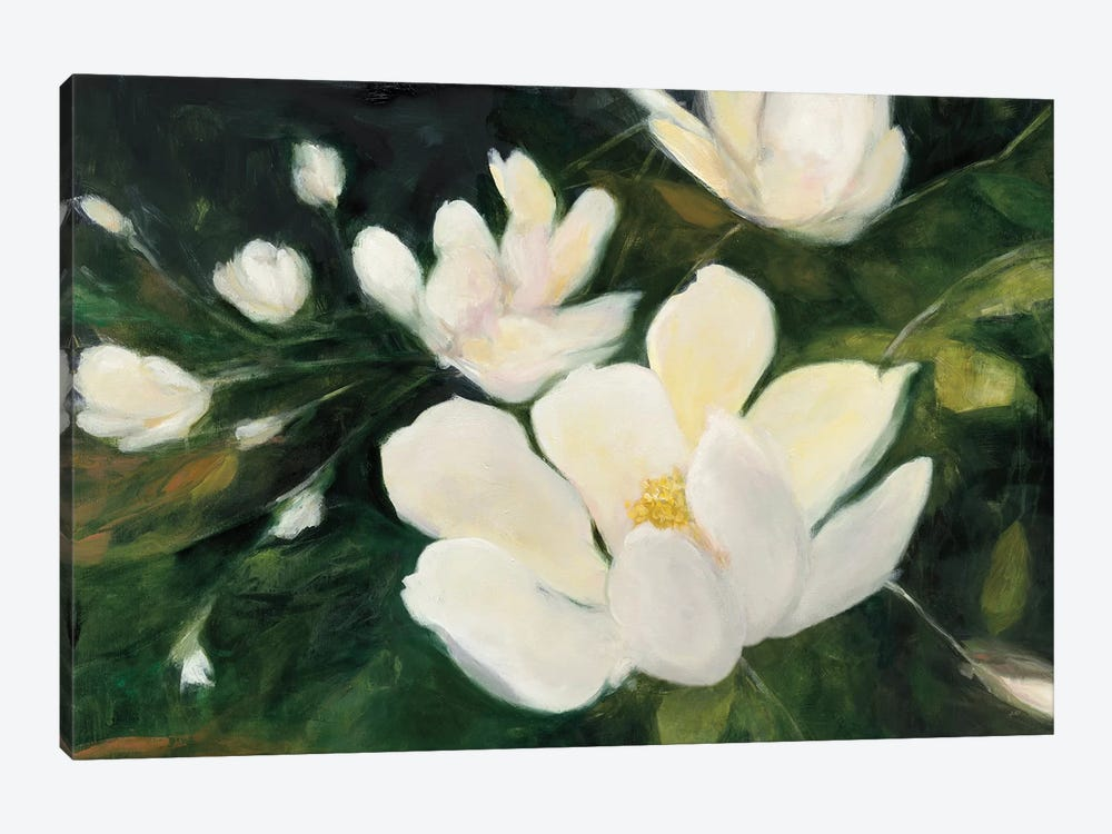 Magnolia Blooms In Zoom by Julia Purinton 1-piece Canvas Print