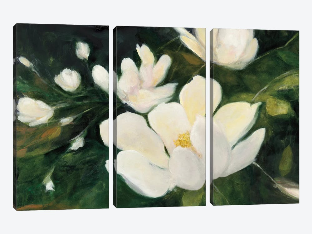 Magnolia Blooms In Zoom by Julia Purinton 3-piece Art Print