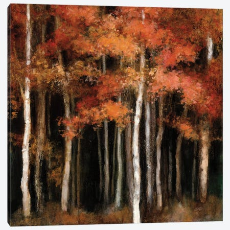 October Woods Canvas Print #WAC6789} by Julia Purinton Canvas Print