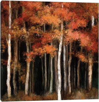 October Woods Canvas Art Print