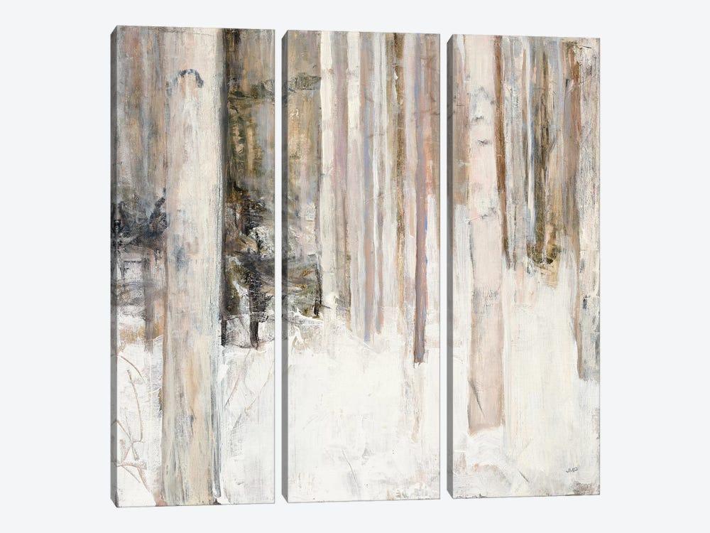 Warm Winter Light II by Julia Purinton 3-piece Canvas Art