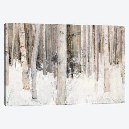 Warm Winter Light III Canvas Print #WAC6793} by Julia Purinton Canvas Wall Art