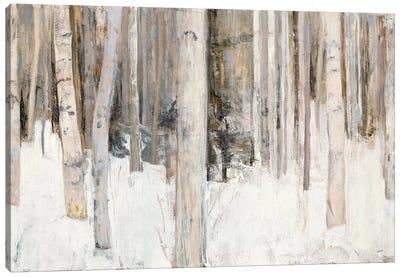 Warm Winter Light III Canvas Art Print