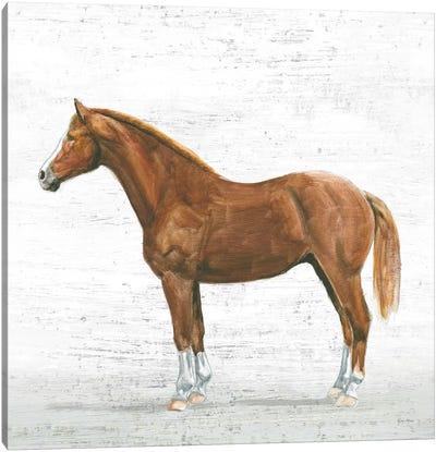 Natural Charm II Canvas Art Print