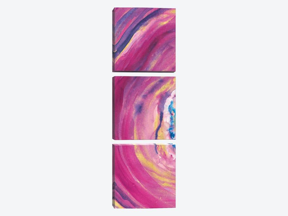 Rarity V by Sue Schlabach 3-piece Canvas Art Print