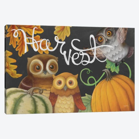 Harvest Owl IV Canvas Print #WAC6835} by Mary Urban Canvas Artwork