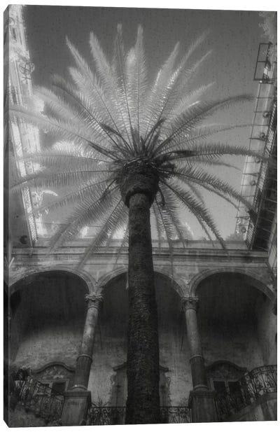 Palermo Canvas Art Print