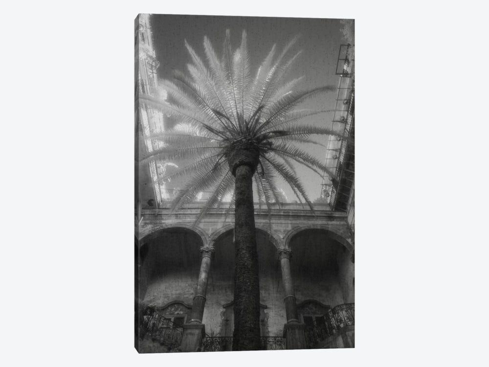 Palermo by Jim Dratfield 1-piece Canvas Art Print