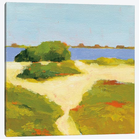 Path To The Beach Canvas Print #WAC6939} by Phyllis Adams Canvas Artwork
