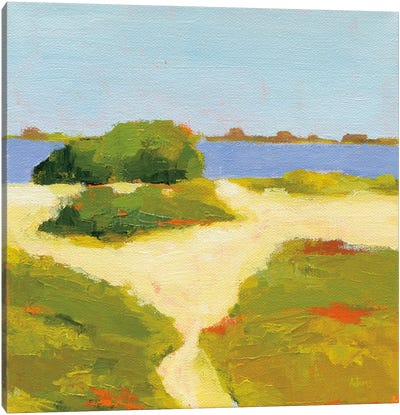 Path To The Beach Canvas Art Print