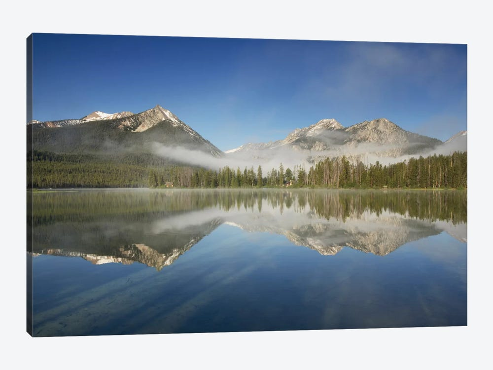 Petit Lake Reflection by Alan Majchrowicz 1-piece Canvas Wall Art