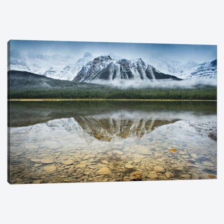 Waterfowl Lake I Canvas Print #WAC6943} by Alan Majchrowicz Canvas Art Print