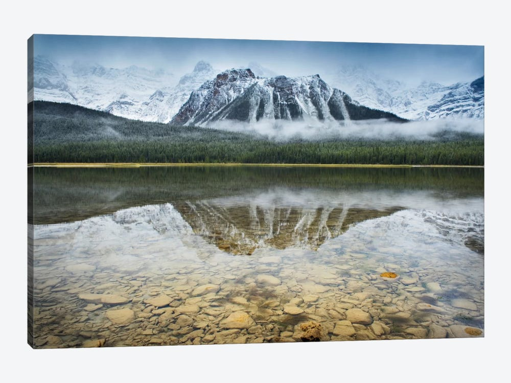 Waterfowl Lake I by Alan Majchrowicz 1-piece Canvas Art Print