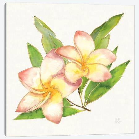 Tropical Fun Flowers I Canvas Print #WAC6951} by Harriet Sussman Canvas Artwork
