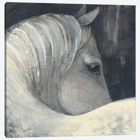 Bijou Canvas Print #WAC7007} by Albena Hristova Canvas Art