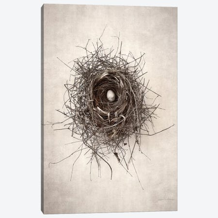 Nest I Canvas Print #WAC7031} by Debra Van Swearingen Canvas Artwork