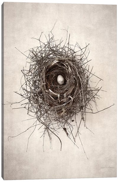 Nest I Canvas Art Print