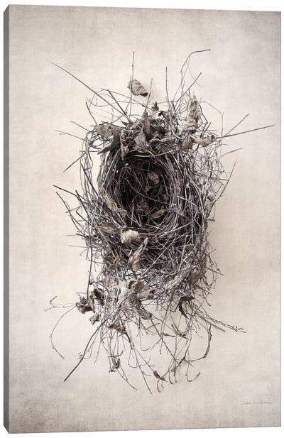 Nest II Canvas Art Print