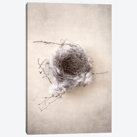 Nest III Canvas Print #WAC7033} by Debra Van Swearingen Canvas Artwork