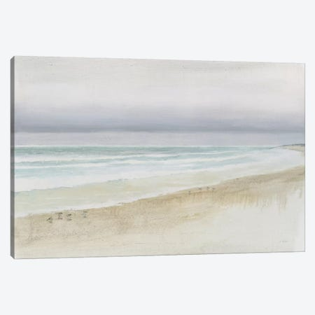 Serene Seaside Canvas Print #WAC7035} by James Wiens Art Print