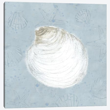 Serene Shells II Canvas Print #WAC7039} by James Wiens Canvas Wall Art