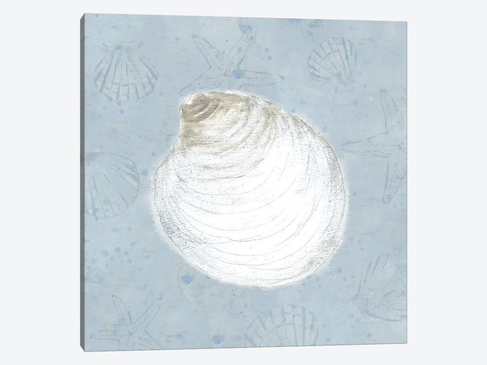 Serene Shells II by James Wiens 1-piece Canvas Art