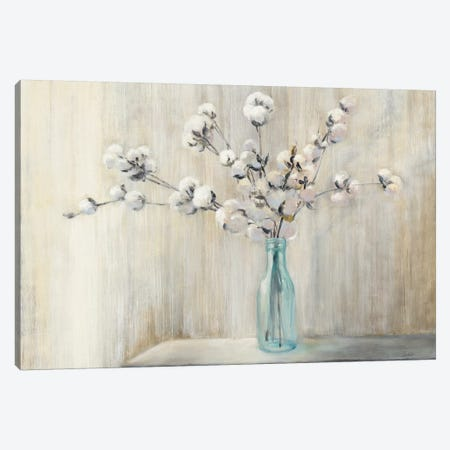 Cotton Bouquet Canvas Print #WAC7046} by Julia Purinton Canvas Artwork