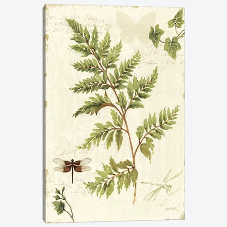 Ivies and Ferns I Canvas Print #WAC704} by Lisa Audit Canvas Art