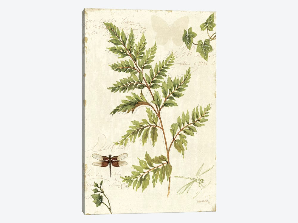 Ivies and Ferns I by Lisa Audit 1-piece Canvas Art Print