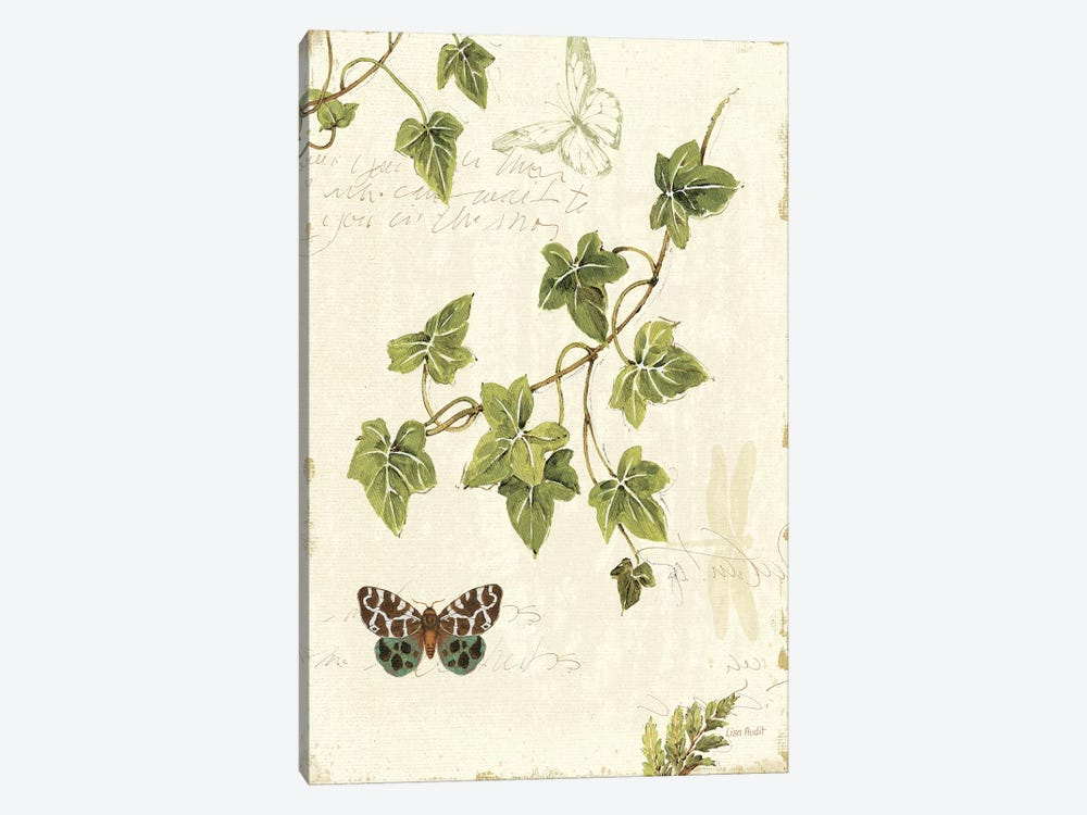 Ivies and Ferns II by Lisa Audit 1-piece Canvas Wall Art
