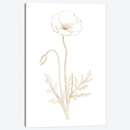Gilded Botanical I Canvas Print #WAC7064} by Wild Apple Portfolio Canvas Artwork