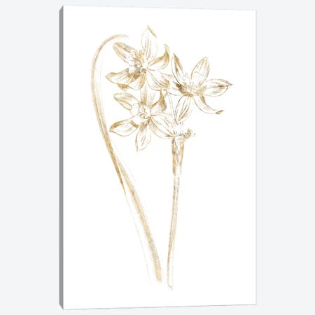 Gilded Botanical IV Canvas Print #WAC7067} by Wild Apple Portfolio Canvas Wall Art