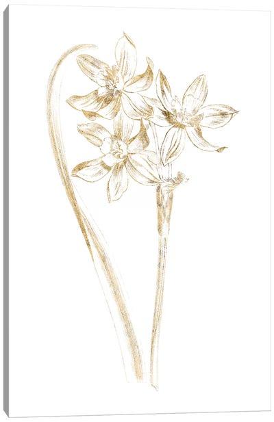 Gilded Botanical IV Canvas Art Print