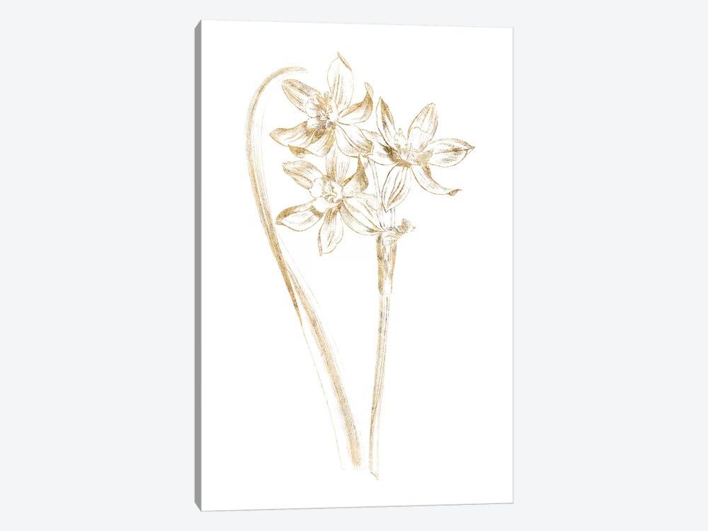 Gilded Botanical IV by Wild Apple Portfolio 1-piece Canvas Art Print