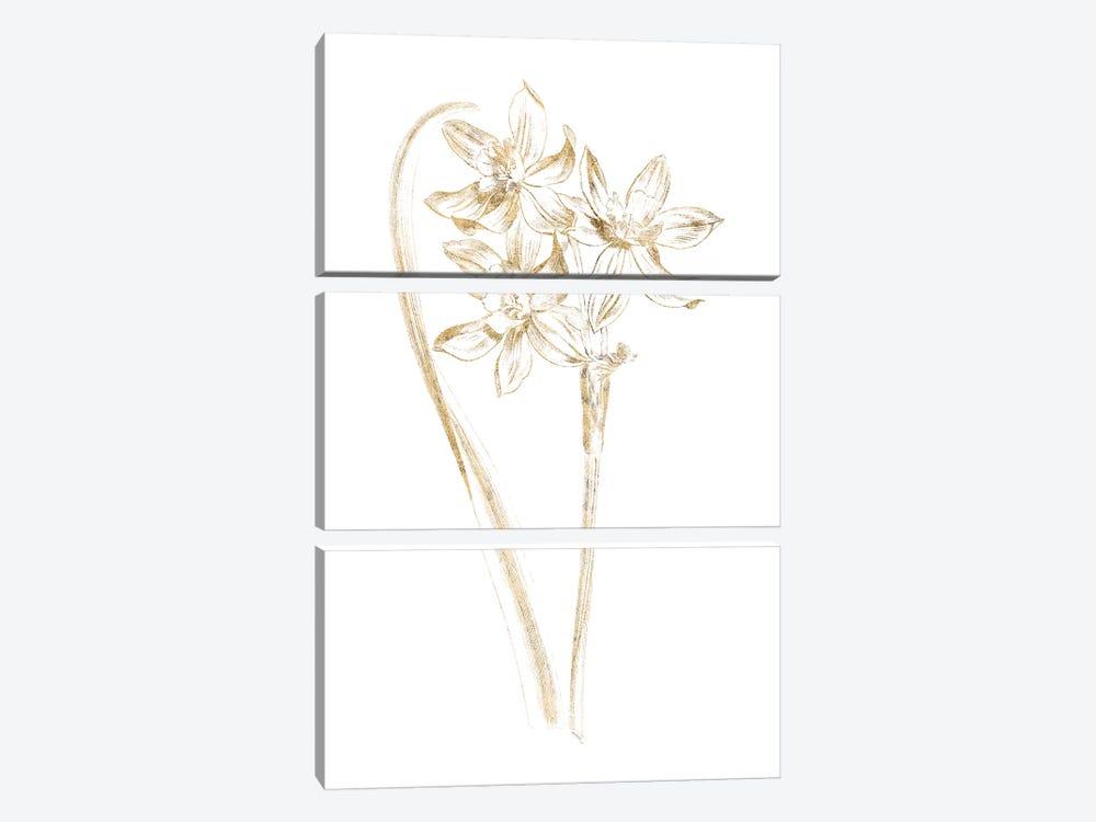 Gilded Botanical IV by Wild Apple Portfolio 3-piece Canvas Art Print