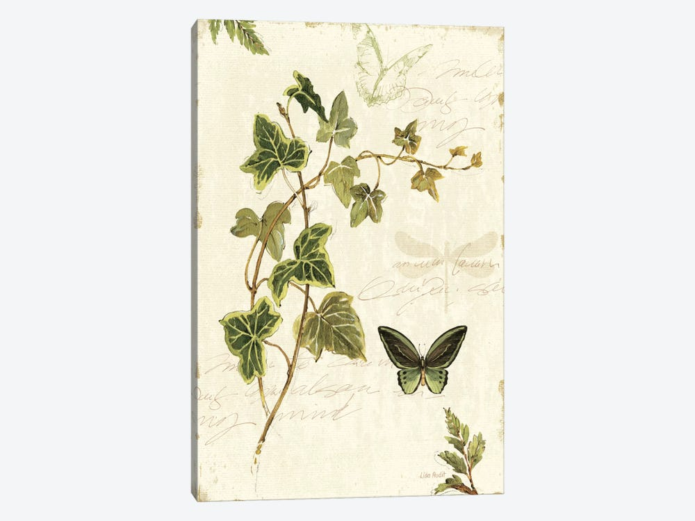Ivies and Ferns IV by Lisa Audit 1-piece Canvas Artwork